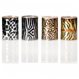 Transfer Effect-Animalier Set 4 pz